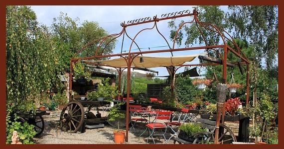 MichelAngelou verzaubert Das Alte Kelterhaus in Alsheim